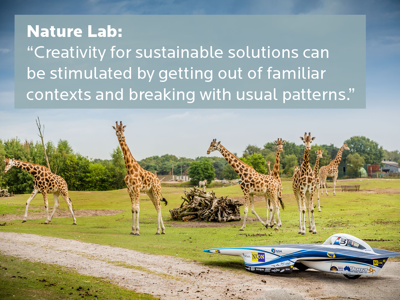 Nature Lab - Go out and explore your creativity - Rainbow